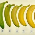 banane-f