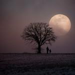 mjesec-ludo
