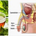 lijek-prostata