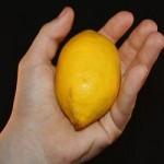limun-ruka