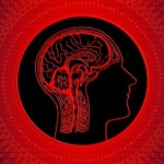 glava-mozak