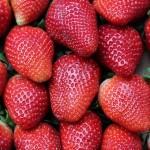 strawberries-1395771_640