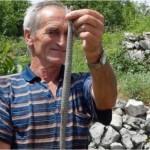 Ako u svome dvorištu imate problem sa zmijama: Ovo su stvari koje zmije mrze i bježe glavom bez obzira od njih