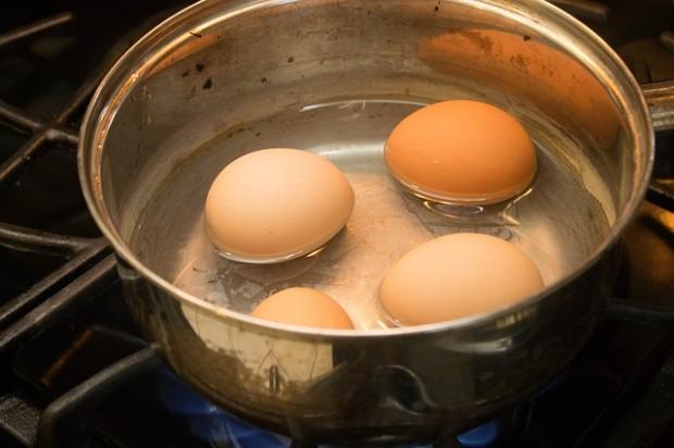 eggs-875255_640